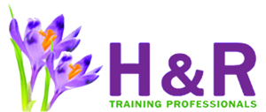 H&R Professionals